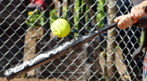 Woman sues Barrhaven slo-pitch league for $1M